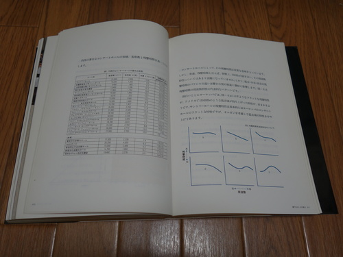 DSC02574.JPG